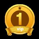 VIP第2年:1级